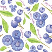 Blueberry_repeat_shop_thumb