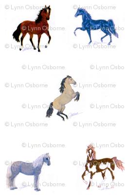 HorseCrazy1