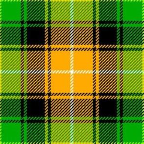 02185583 : tartan : irish