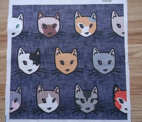 Cats Diversity
