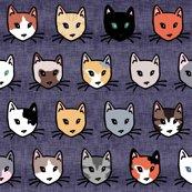 Rcatsdiversity_shop_thumb