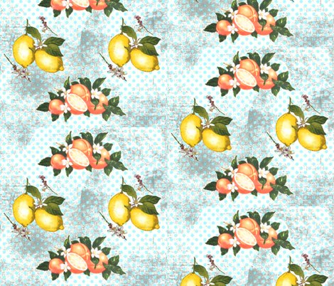 Citrus vintage now fabric by lucybaribeau on Spoonflower - custom fabric