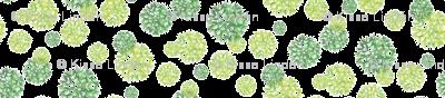 Wishflower in green
