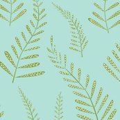 Ferns2_shop_thumb