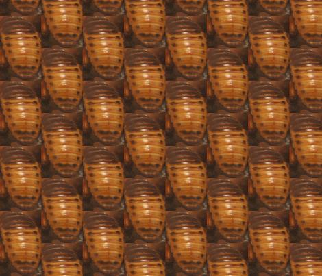 Dermastid Beetles fabric by linda*glass on Spoonflower - custom fabric