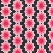 Starburst_flower_bgblack.ai_shop_thumb