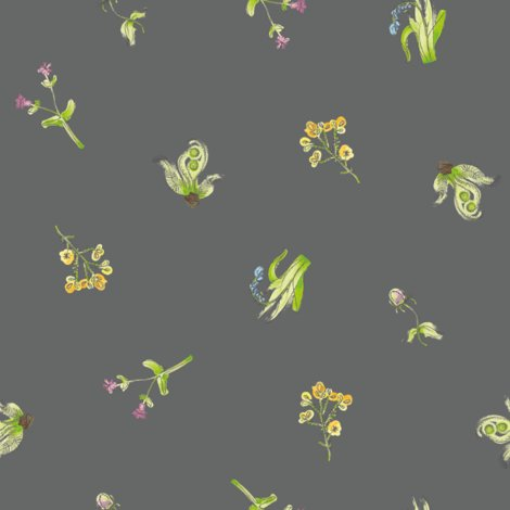 Rwelsh-coast-flora_charcoal_shop_preview