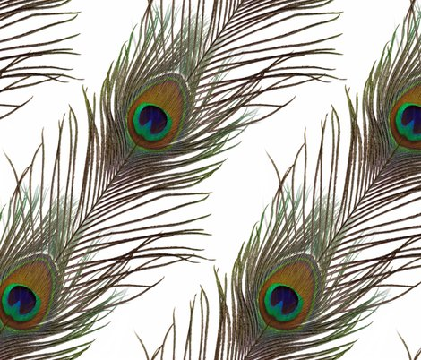 White_peacock_stripe_shop_preview
