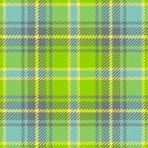 02193701 : tartan : flights of fancy