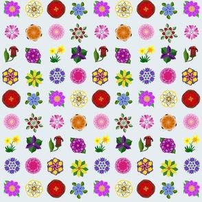 Sixteen Flower Floral