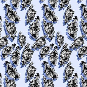 sharkeggshadow