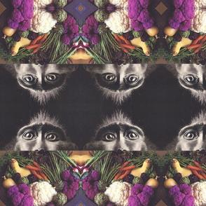 monkeyfruit-ed