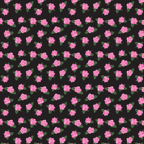Pink Roses on Black