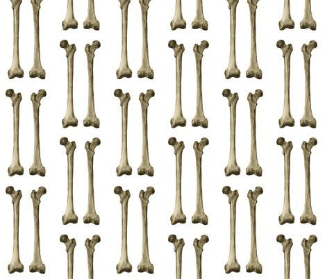 Femur or thigh bone wallpaper - kightleys - Spoonflower