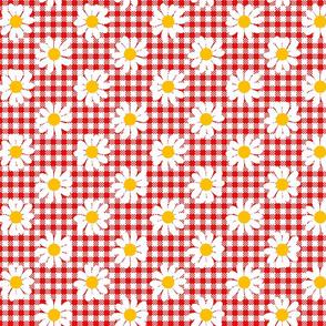 gingham daisy