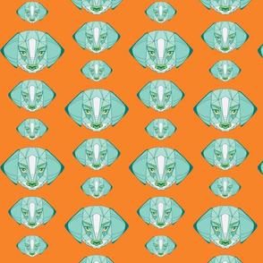 beagles in aqua and orange