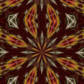 Kaleidescope 0225 k2 dark brown background