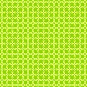 Citrus Leaf Lime