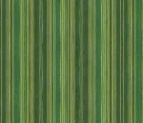 Bamboo: Vertical Stripes fabric by will_la_puerta on Spoonflower - custom fabric