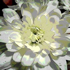 White_Flower_PIllow_1