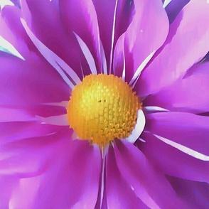 Purple_Daisy_Pillow