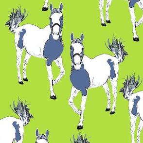 horse_repeat