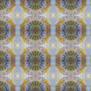 Coral Sun (S)