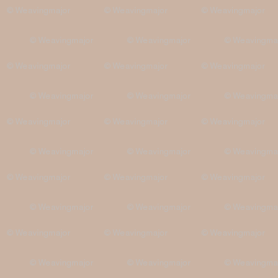 solid warm taupe (CAB3A3)