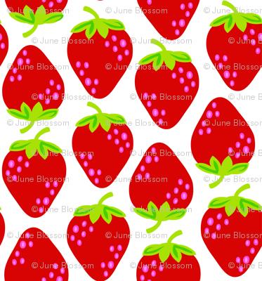 strawberry shortcake large