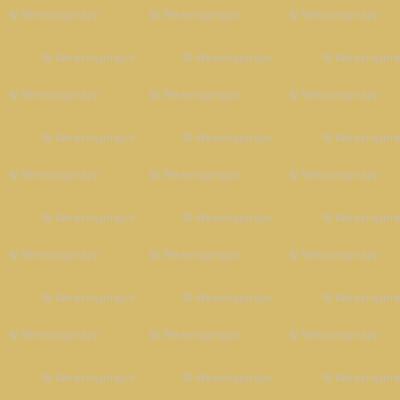 solid golden tan (D5BA6D)