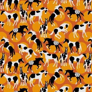 Spot the Horses