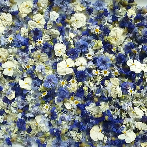 Blue Cornflowers and pansies fabric by larkspur_hill on Spoonflower - custom fabric
