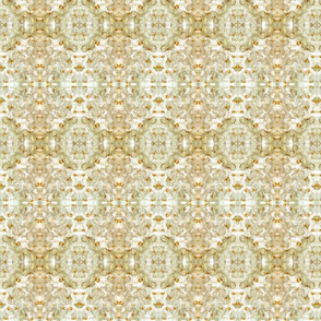 Orchid in beige