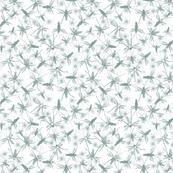 Crickets grey white