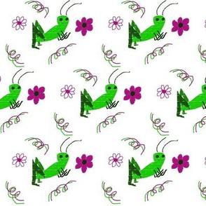 Ditzy spring cricket