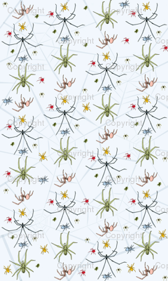 Aplate.spider_pattern.13inx17in_150dpi_preview
