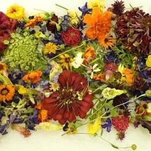 Woodland Dried Flowers