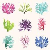 Sea_life_watercolor_paper2-01_shop_thumb