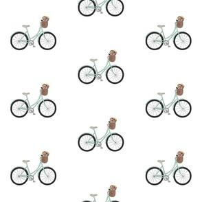 bikecolor1