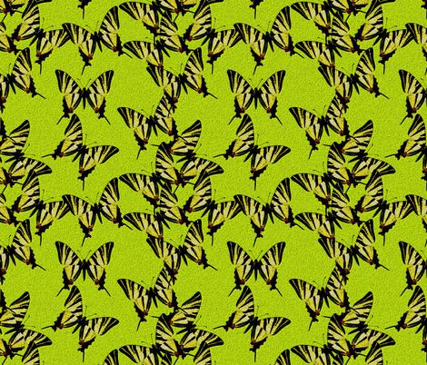 Iphiclides podalirius fabric by joancaronil on Spoonflower - custom fabric