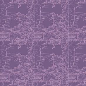 welsh-map-purple