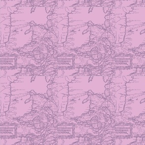 welsh-map-pinks