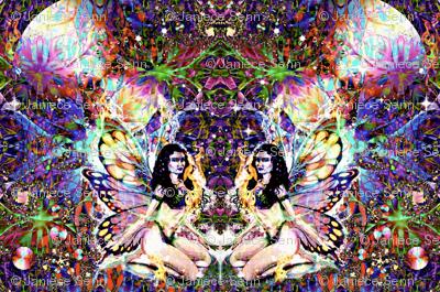 The Firefly Fairies