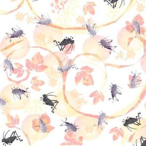 Crickets in peach
