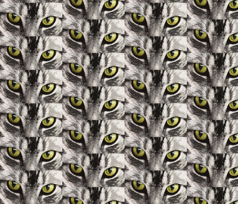 cats eyes  fabric by dogdaze_ on Spoonflower - custom fabric