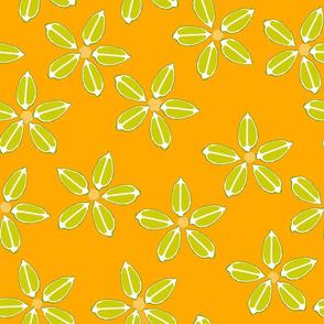 Citrus limes_orange