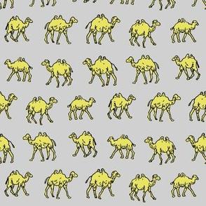 Meandering Camels | Grey