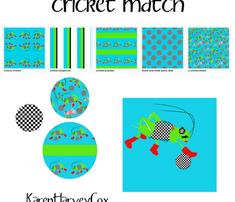 Circket_practice_comment_321696_thumb