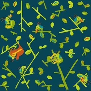 a cricket orchestra