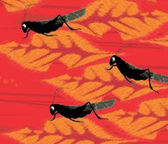 Rrrrlittle_ol_cricket_bugs_comment_321839_thumb
